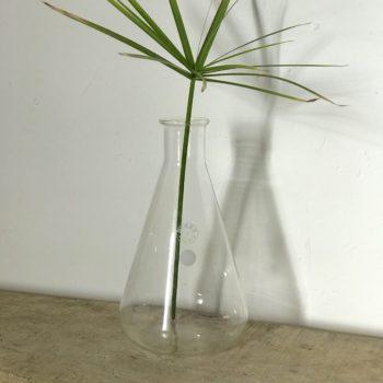 Pichet flacon vase Erlenmeyer chimie Pyrex 1000ml