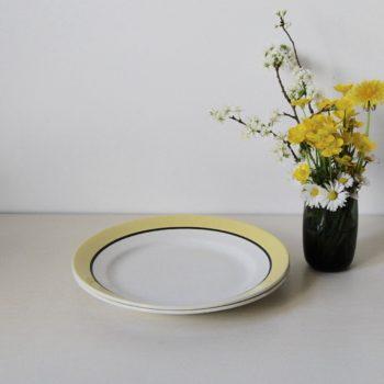 Lot de 2 assiettes plates jaune et noir