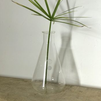 Pichet flacon vase Erlenmeyer chimie Pyrex 1000ml